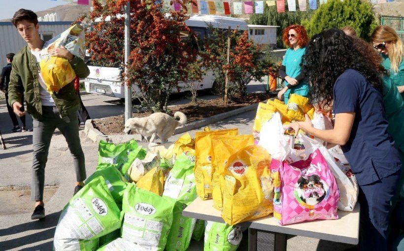 Sokak Hayvanlarına 2 Tonu Aşkın Mama Bağışı Yapıldı