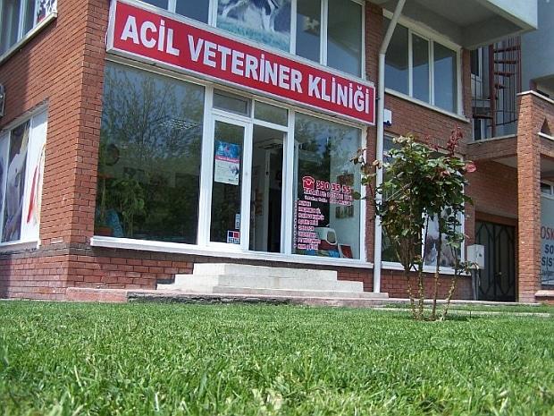acil_1